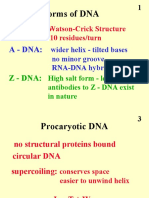 Structure Dna Lecture