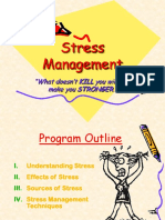 Stress Management Presentation - DNV