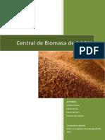 Central de Biomasa de 1MW en Ribadedeva
