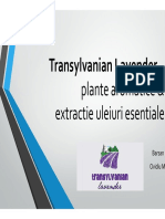 7cu29 2BARSAN Transylvanian Lavender