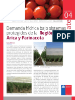 Demanda hídrica bajo sistemas protegidos de la Región de Arica y Parinacota