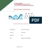 Embriología Humana y Genética Básica - Informe 2 Lab