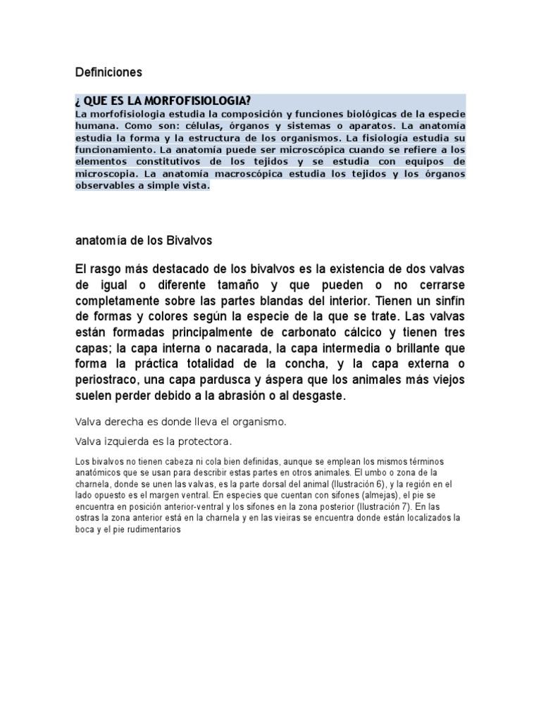 Excepcional Definir La Anatomía Microscópica Bosquejo - Anatomía de ...