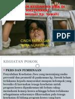 Program Keswa Puskesmas Kp. Sawah