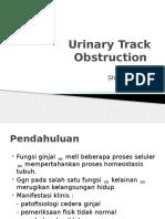 Urinary Track Obstruction