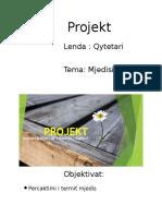 projekt-140603102603\\\-phpapp01