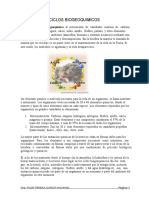 Ciclos_Biogeoquímicos_22