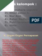 Biologi ( Sistem Pernapasan) Power Point
