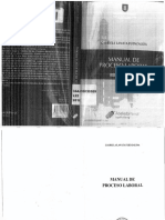 Lanata - Manual de Proceso Laboral