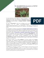 Control Natural de Garrapatas Pastos Letales