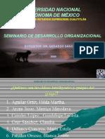Seminario de Desarrollo Organizacional.ppt