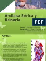 Seminario N_ 8 Amilasa