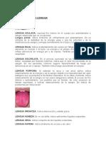 LA LENGUA. Indicaciones Para El Diagnóstico