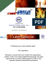 Levitt-SafetyPresentation NOV 09