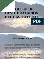 PROCESO DE DESHIDRATACION DEL GAS NATURAL 2.ppt