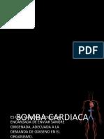 Exposicion Corazon Como Bomba