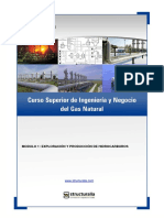 ingenieria-negocio-gas-natural.pdf