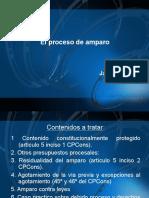 Der.proc.Constituc Amparo 2016