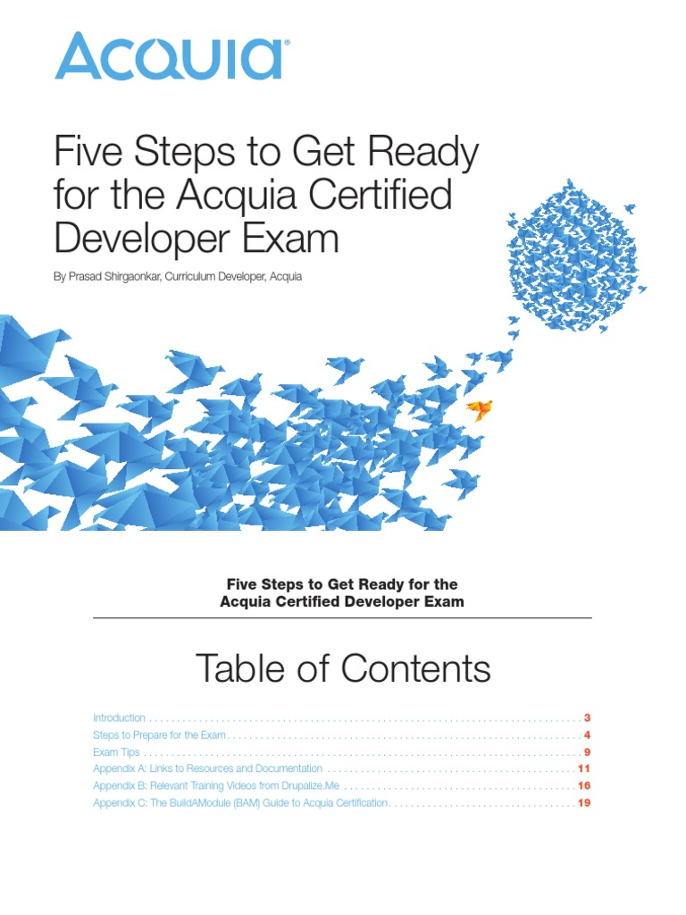 Five steps for acquia certified developer exam drupal five steps for acquia certified developer exam drupal application programming interface xflitez Images
