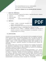 ESQUEMA_PROPUESTA_FINAL_ORGANIZADORES.docx