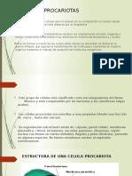 CELULAS PROCARIOTAS.pptx
