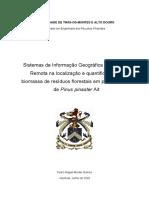 Master dissertation Forest Pedro_Gomes