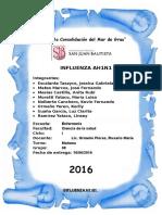 Gripe Monografia Entregar111