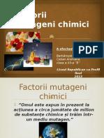Factorii chimici