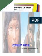 Consulta Previa Mininterior 2009