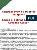 Consulta Previa UExt Carlos Salinas