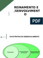 TREINAMENTO E DESENVOLVIMENTO.ppt