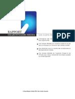 Smartfingers Media, Rapport sur l'industrie mobile et le marche applicatif Fev. 2010