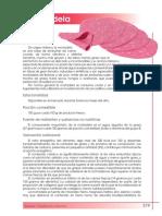 mortadela_tcm7-315421 carnicos.pdf
