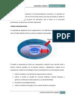 LIDERANDO CAMBIOS (contenido).pdf