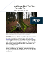 German Forest Ranger Finds That Trees Have Social Networks