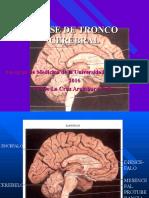 Clase de Tronco Encefalico Completo (III).