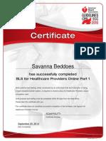 bls online course certificate