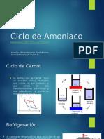 Ciclo de Amoniaco