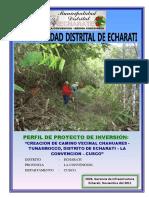 PIP Camino Vecinal Chahuares.pdf