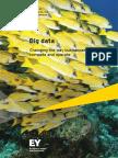 EY Insights on GRC Big Data