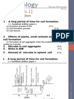 Soil Ecology (Lecture 1)