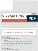 3 GIS Data Structure