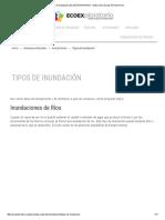 Tipos de Inundación _ ECOEXPLORATORIO - Museo de Ciencias de Puerto Rico