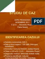 2 3 Studiu de Caz Cristina