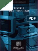 112312562 Teoria Del Proceso Luis Dorantes Tamayo