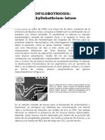 difilobotrium