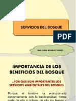 Clase 3. Servicios del bosque.pdf