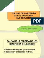 Clase 5. Causa de la perdida de los bosques-escorrentía.pdf