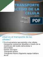 Transporte Activo de La Celula