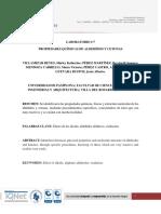 Informe #7 Quimica Organica